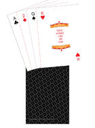 Mini Poker Deck - TTC back - Black