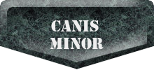 Canis Mior