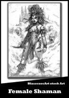 BlaszczecArt Stock Art: Female Shaman