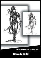 BlaszczecArt Stock Art: Dark Elf B&W
