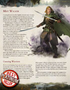 The Mist Walker - 5e Class