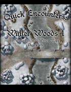 Quick Encounters: Winter Woods 1