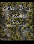 Critical Trails: Modular Rivers 1