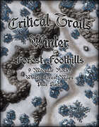 Critical Trails Winter: Forest Foothills