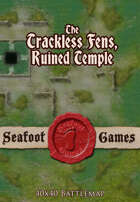 Seafoot Games - Trackless Fens Swamp, the Ruined Temple (40x40 Battlemap)