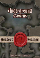 Seafoot Games - Caverns (20x30 Battlemap)
