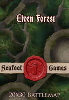 Seafoot Games - Elven Forest | 20x30 Battlemap