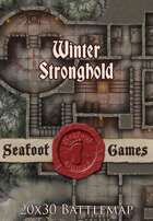 Seafoot Games - Winter Stronghold | 20x30 Battlemap