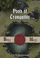 Seafoot Games - Pools of Tranquility | 40x30 Battlemap