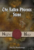 30x20 Battlemap - The Fallen Phoenix Stone (Night)