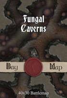 40x30 Battlemap - Fungal Caverns