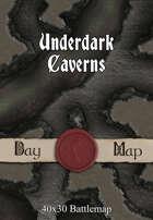 40x30 Battlemap - Underdark Caverns