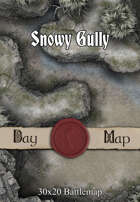 30x20 Battlemap - Snowy Gully