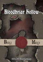 60x20 Battlemap - Bloodbriar Hollow