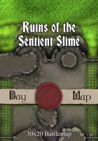 30x20 Battlemap - Ruins of the Sentient Slime