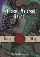 30x20 Battlemap - Ancient Asteroid Garden