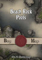 40x30 Battlemap - Beach Rock Pools