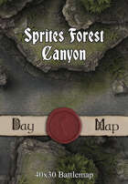 40x30 Battlemap - Sprites Forest Canyon