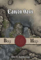 40x30 Battlemap - Canyon Oasis