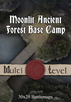 30x20 Multi-Level Battlemap - Moonlit Ancient Forest Base Camp