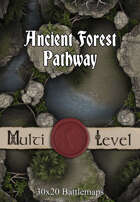 30x20 Multi-Level Battlemap - Ancient Forest Pathway