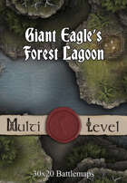 30x20 Multi-Level Battlemap - Giant Eagle's Forest Lagoon