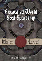 40x30 Multi-Level Battlemap -  Excavated World Seed Spaceship