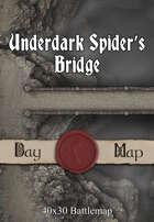 40x30 Battlemap - Underdark Spider's Bridge
