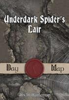 40x30 Battlemap - Underdark Spider's Lair