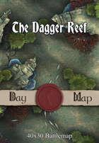 40x30 Battlemap - The Dagger Reef