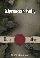 40x30 Battlemap - Wyrmtooth Gully