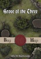 40x30 Battlemap - Grove of the Three