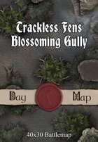 40x30 Battlemap - Trackless Fens Blossoming Gully