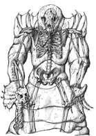 A Doom To Speak: Beware the Bone Emperor