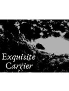Exquisite Carrier (or: Five of My Children In a Single Grave)