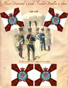 1814-1864 Hesse-Darmstadt Garde-Fusilier-Regiment Flag