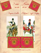 1743-1803 French Raugrave/Hanover 9th Dragoons Cavalry Standard