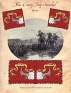 1660-1710 Three County Troop Standard