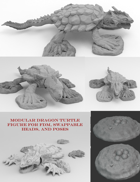 Dragon Turtle Set