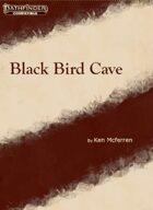 Black Bird Cave