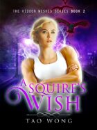 A Squire's Wish: Book 2 in the Hidden Wishes series