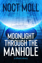 Moonlight Through the Manhole: a short story