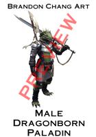 Fantasy Character Stock Art: Male Dragonborn Paladin