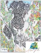 Icewell (Color)