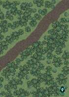 Forest Trail map (50x50)