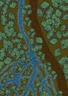 Forest Stream Crossing (25x50) map