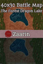 40x30 Fantasy Battle Map - The Forest Dragon Lake