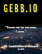 Gebb 28 – Conditions of Release