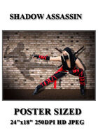 DunJon Poster JPG #98 (Shadow Ninja)