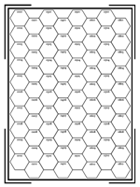 Single Subsector Hex Grid